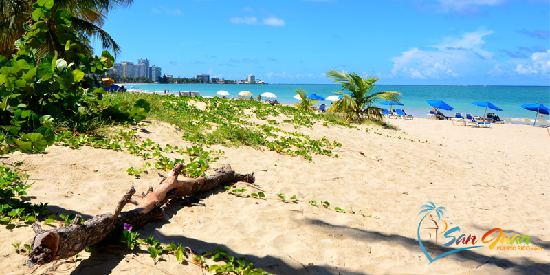 Beaches of Isla Verde, Carolina, Puerto Rico