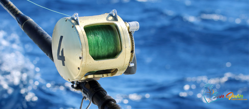 Fishing Charters - San Juan, Puerto Rico & Nearby - Things to Do