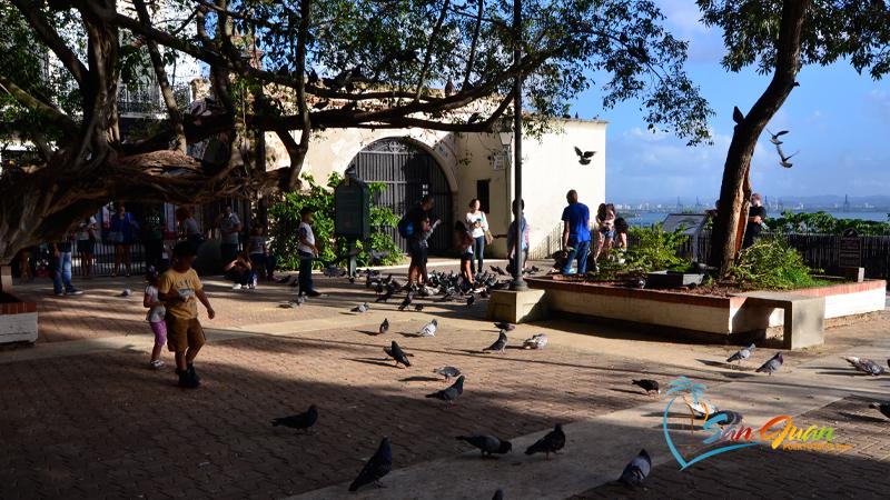 Parque de las Palomas - Old San Juan, Puerto Rico