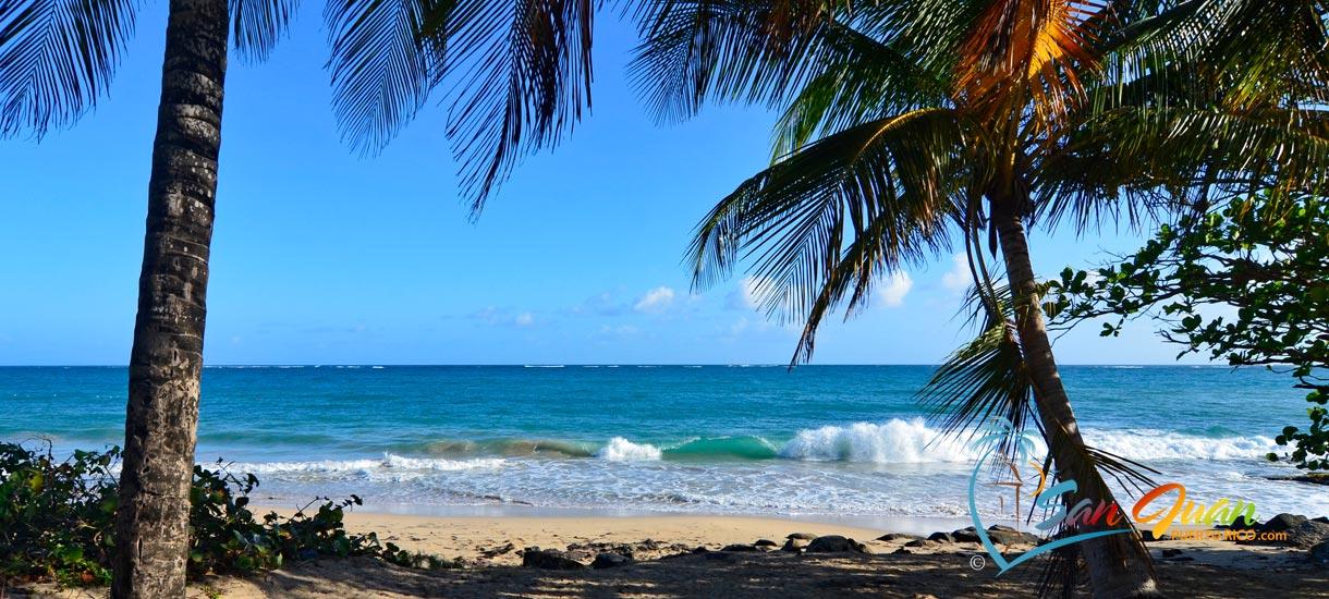 El Ultimo Trolley Beach - Ocean Park - San Juan, Puerto Rico