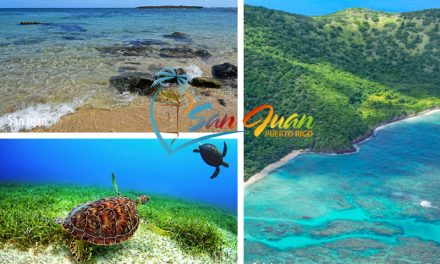 Best Snorkeling Beaches & Tours in San Juan & Top Excursions