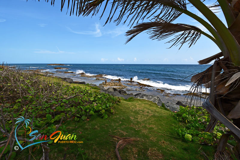 Romantic Walk along the Beach - Thiings to Do in San Juan, Puerto Rico