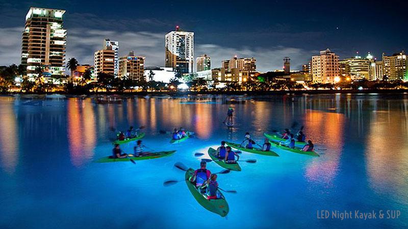 Kayaking Night Tour in Laguna del Condado - San Juan, Puerto Rico